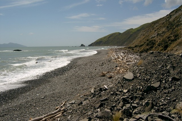 The Tasman Sea pounds away at the deserted shoreline between Plimmeton and Pukerua Bay. It is about 3km between the end of the road and Waiaraka Point (in the far distance) from both ends. People seem to find it a convenient place to light fires they don't put out properly - the further from the road the better !!!